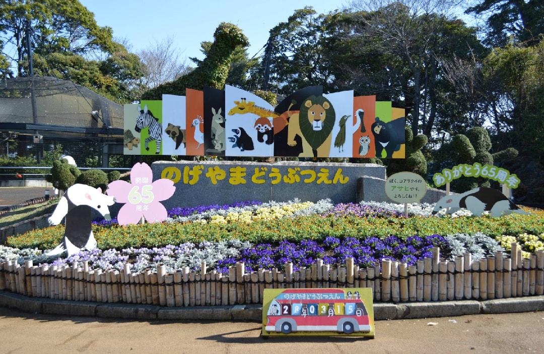 Nogeyama-zoo